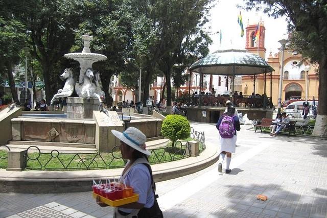Muere un niño con rabia humana en Cochabamba