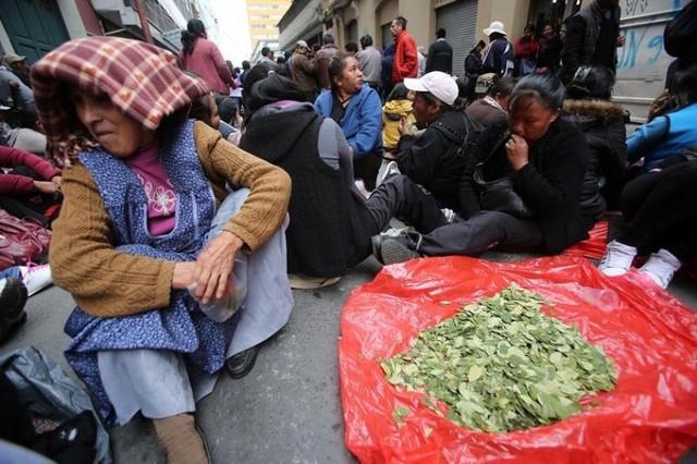 Cocaleros piden hablar con el Presidente sobre el proyecto de ley de la hoja de coca