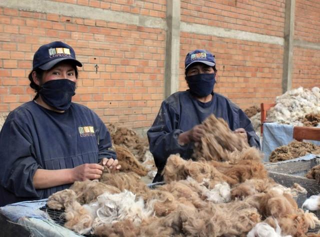 Chuquisaca ocupa el séptimo lugar de la base empresarial del país