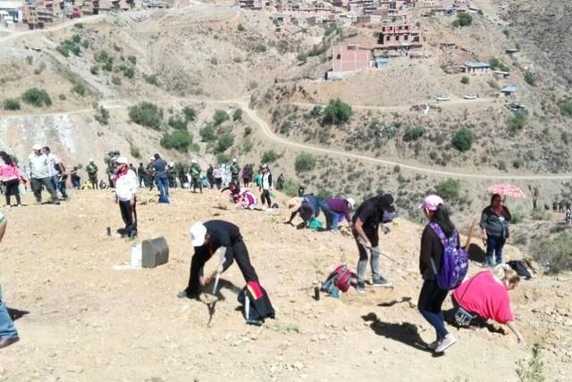 Miles de voluntarios participan de forestación con 10.000 plantines en el barrio Edén