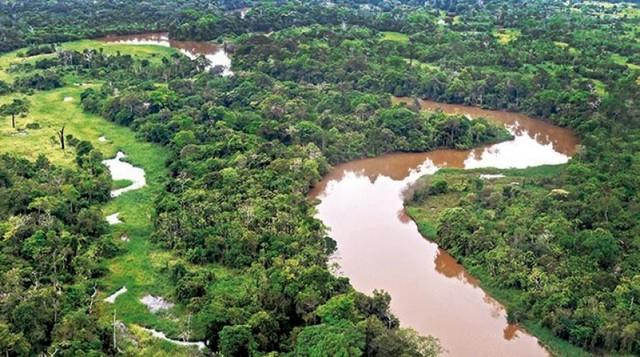 Salvar la Amazonía, una misión posible en Bolivia