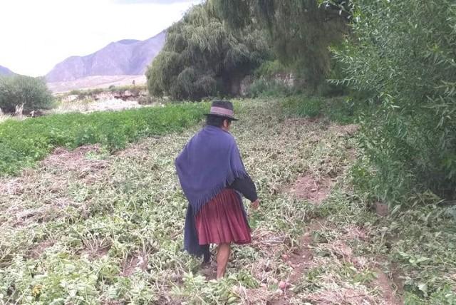 Chuquisaca: Suman seis personas fallecidas por desastres en 2019