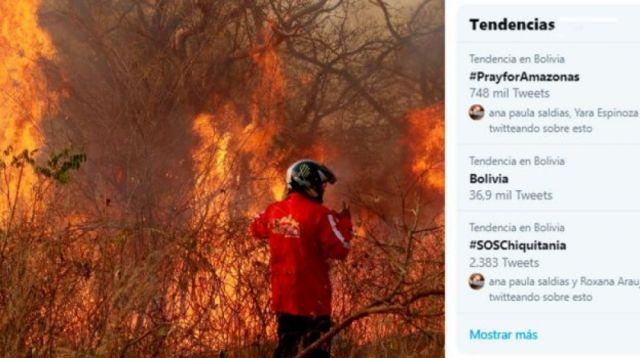 Incendios forestales conmueven a artistas internacionales
