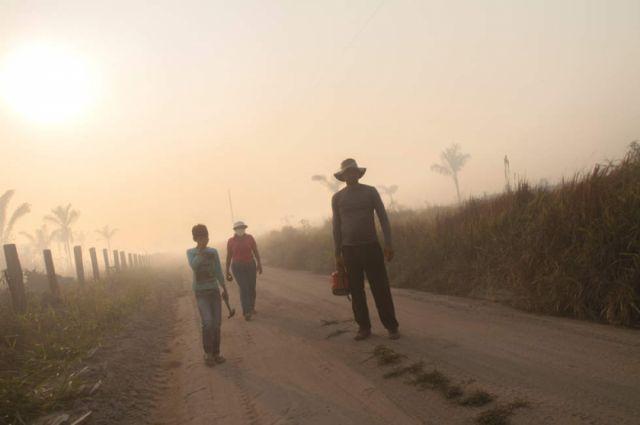 Alistan cumbre amazónica para asumir medidas contra los incendios forestales