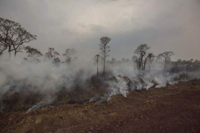 Extinción de incendios se concentrará en el norte de Concepción