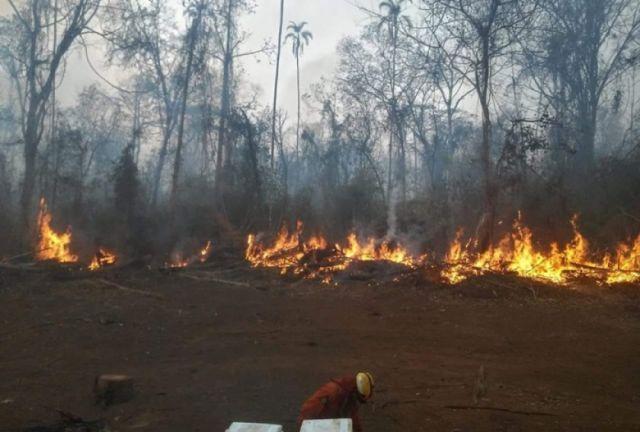Incendios: Voluntario fallece en el municipio de Concepción
