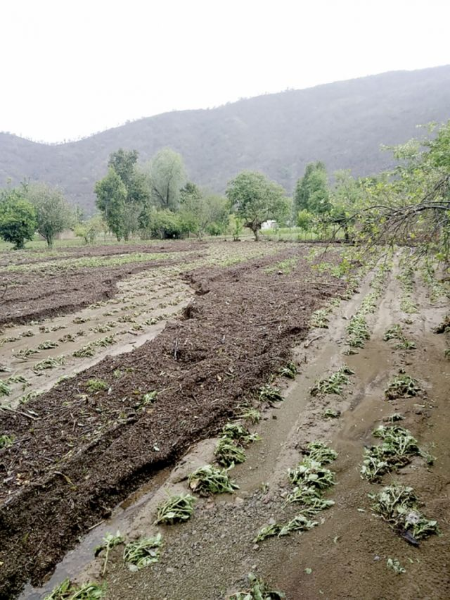 Lluvia, granizada y viento golpean a comunidades