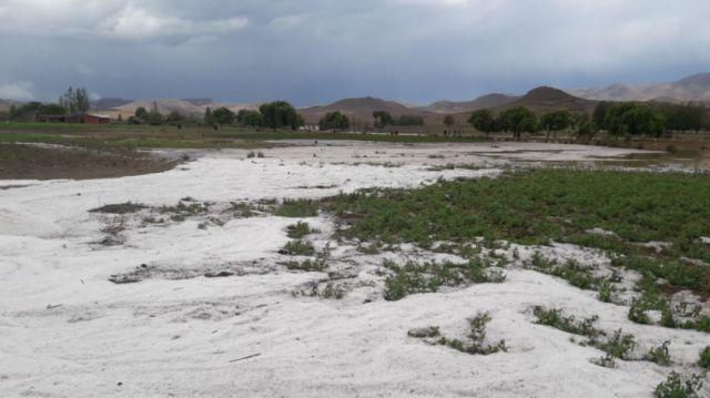 Familias de Villa Charcas son afectadas por fuerte granizada - Correo del Sur