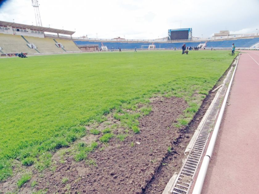 Diagnóstico al estadio Patria