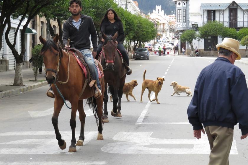 Otros hicieron un paseo a caballo. Foto: Enrique Quintanilla