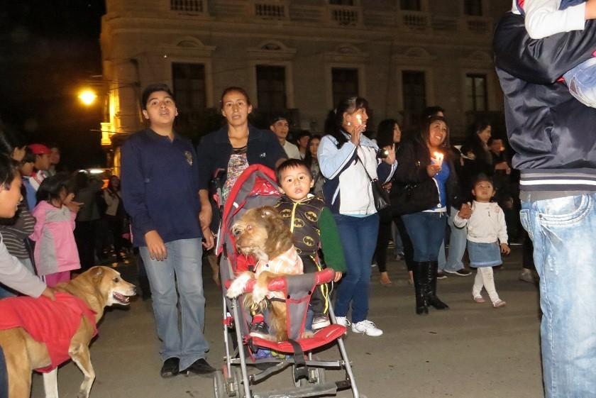 Decenas de personas acudieron a la marcha con sus mascotas. Foto: CORREO DEL SUR