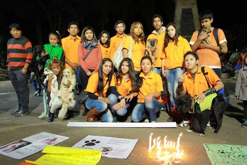 Asociación Salvando Huellas y Bigotes.