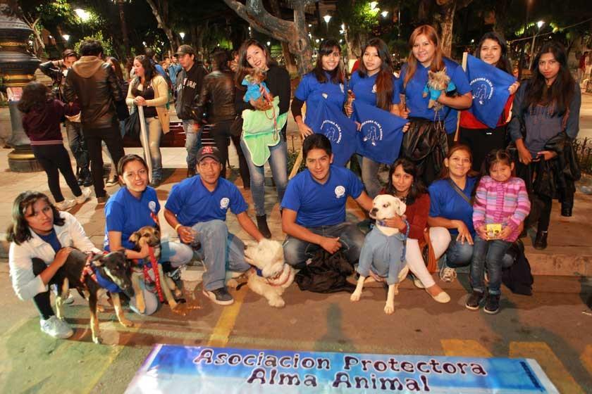 Asociación protectora Alma Animal.