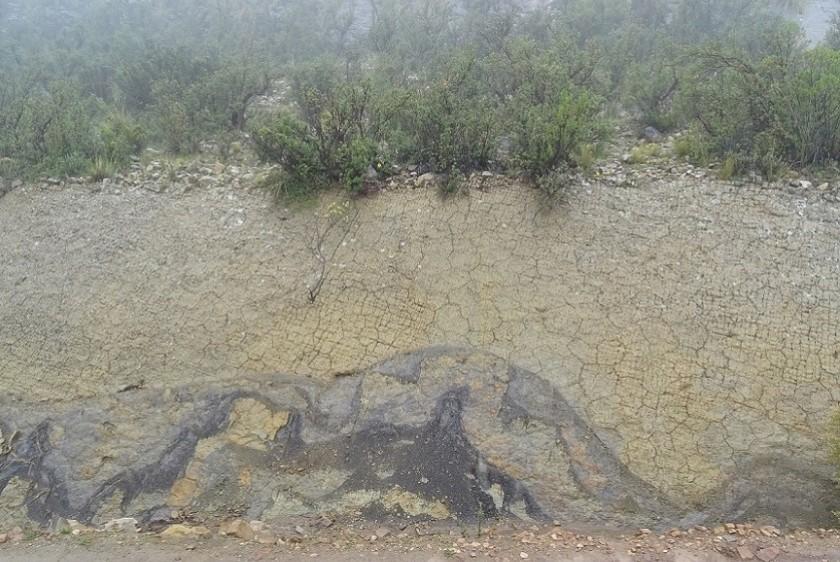 Uno de los planchones con las huellas de dinosaurios. Foto: Gentileza/Omar Medina