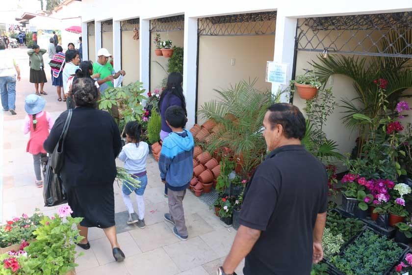 Se abre el Mercado de Las Flores