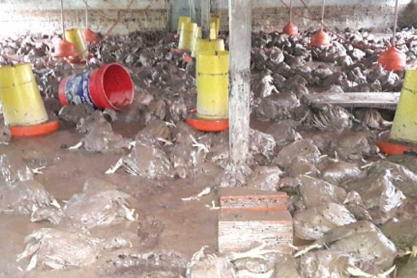 Lluvias inundan Monteagudo y cortan carreteras