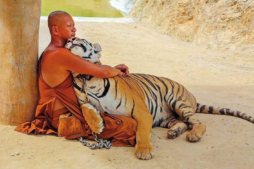 El misterioso Templo del Tigre
