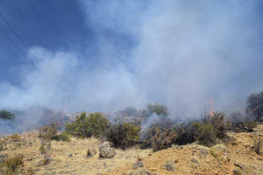 REFRIEGA. La Policía usó gases lacrimógenos y los movilizados quemaron pastizales en la cima del cerro.