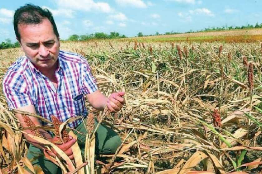 Bolivia enfrenta  la peor sequía en  25 años en medio  de focos de calor