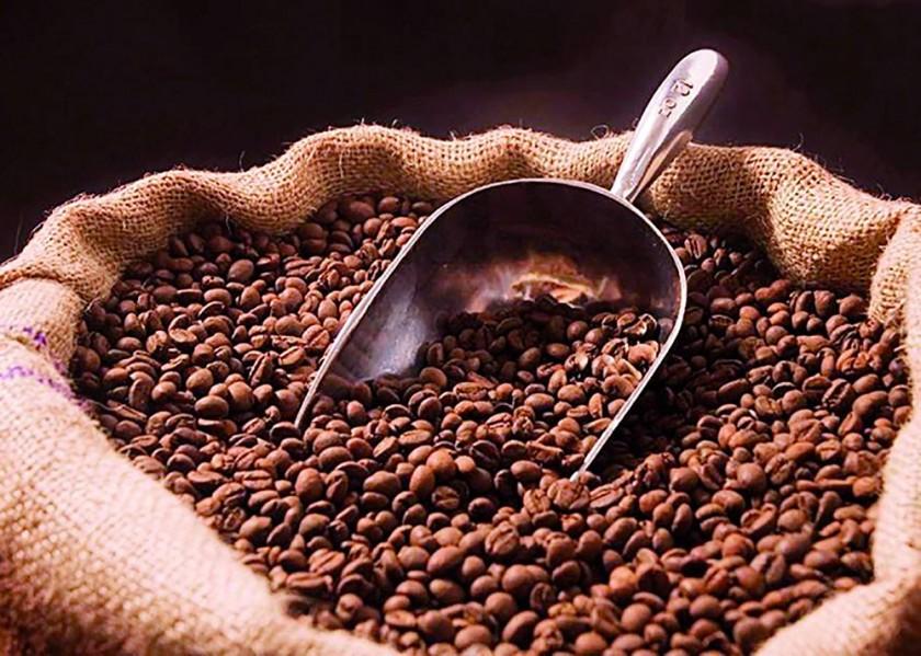 El cacao podría ingresar a una etapa de crisis a nivel internacional, de acuerdo con las previsiones. Internet