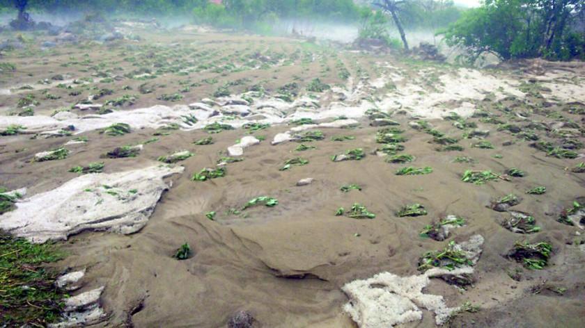 Bolivia perdió por los desastres 459 mil hectáreas de cultivos: 2016