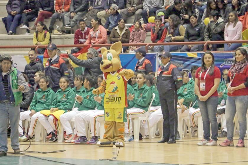 Fely, la gata andina, es la mascota del evento sudamericano.