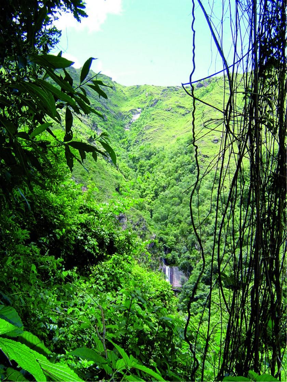 Una vista de la serranía del Iñao. FOTO: Plan de Manejo PN ANMI Serranía del Iñao (2012-2021).
