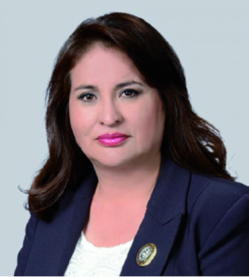 Karen Lorena Gallardo Cochabamba 38.24%