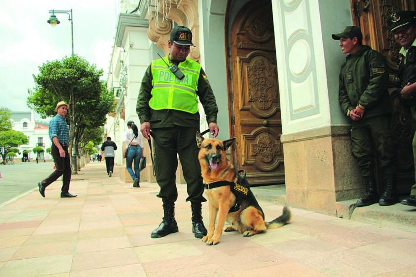SEGURIDAD. El plan de seguridad de la Policía por las fiestas de fin de año contempla la participación de canes y sus...