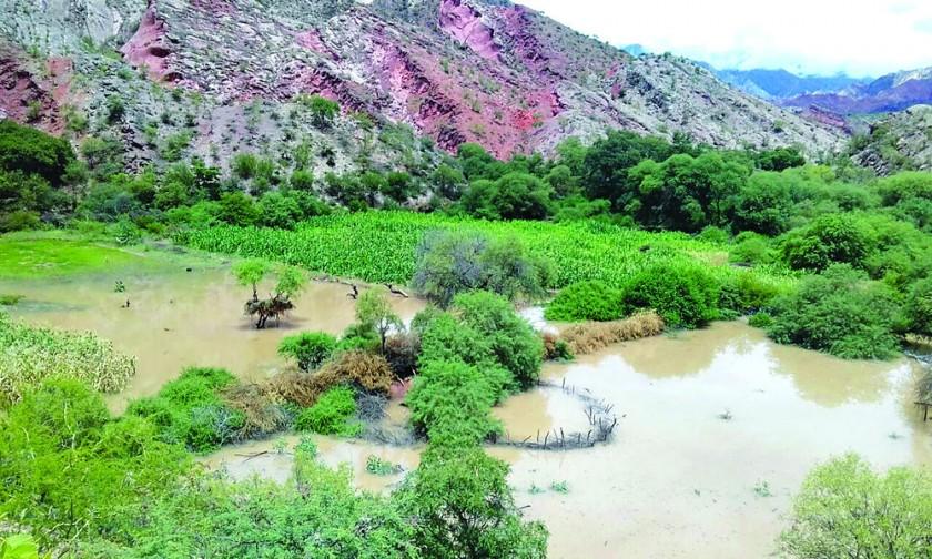 Desborde del río Pilcomayo golpea a Icla y sauceños aún esperan agua