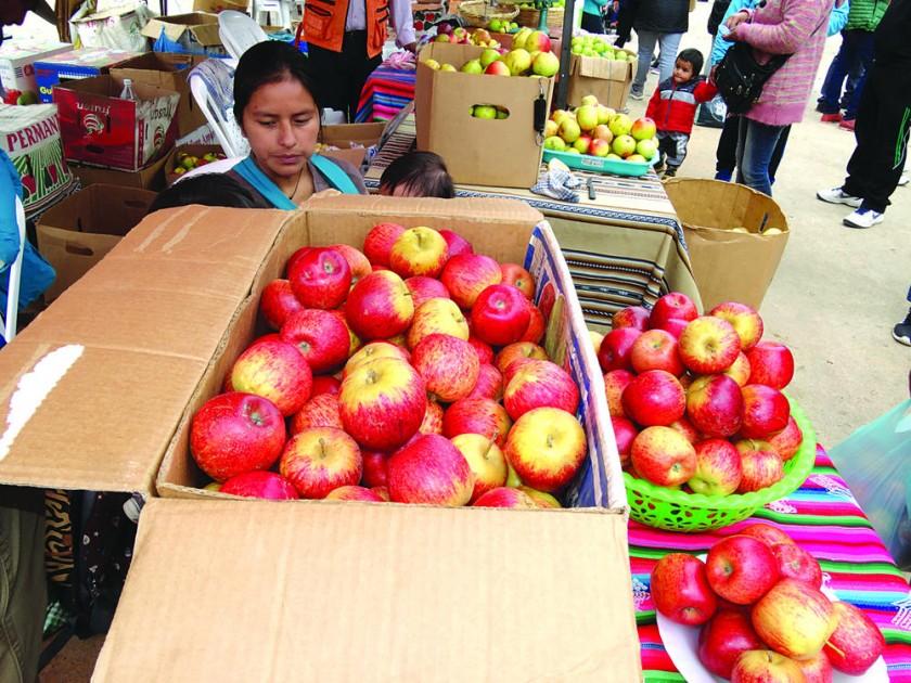 FERIA. Productores de manzana, queso y frutas de temporada, en el Multiproposito.