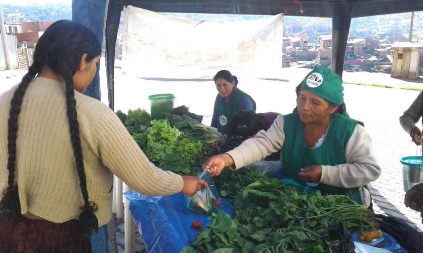 En los huertos urbanos se produce una variedad de verduras y hortalizas que luego se ponen a la venta. FOTOs CEDIDAs