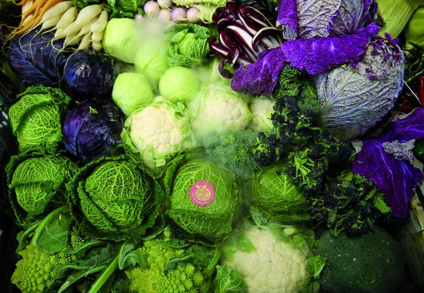 Coles, alimento estrella por sus compuestos fitoquímicos que estimulan la producción de enzimas bloqueando el daño...