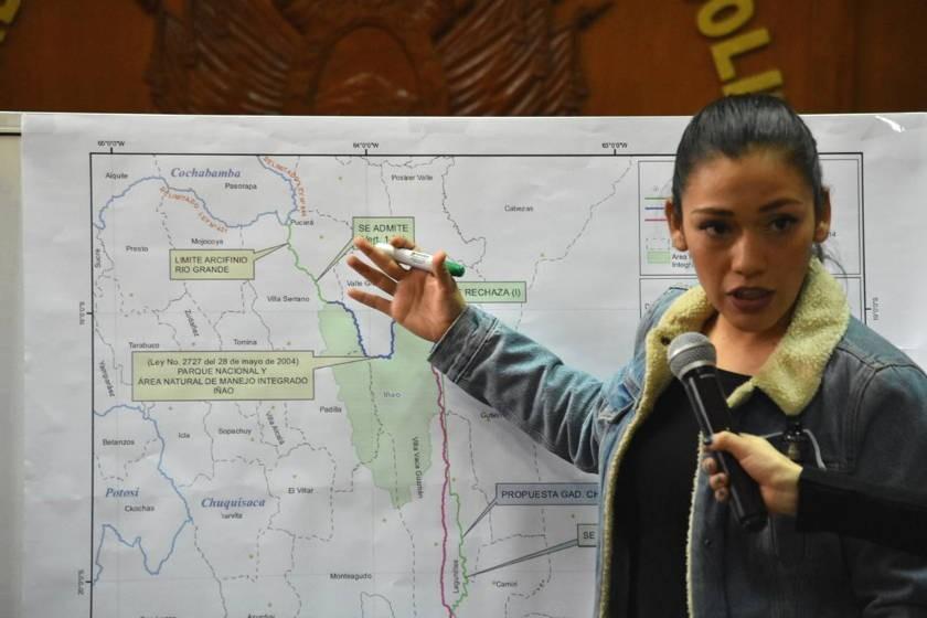 Adriana Salvatierra, presidenta de la comisión. Foto: APG