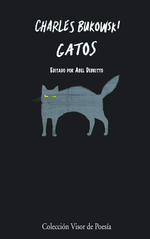 Los gatos no tienen miedo