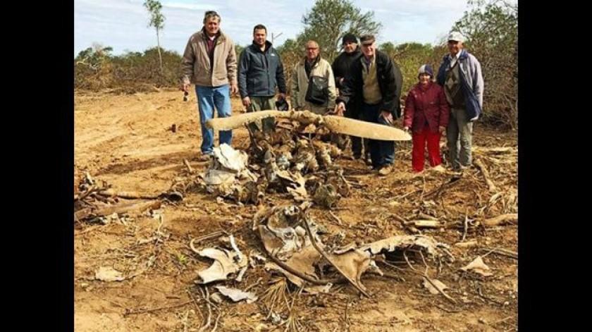 Bolivia y Paraguay se disputan trofeos de la Guerra del Chaco
