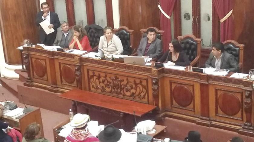 DEBATE. Una imagen de la sesión de ayer de la Cámara de Diputados.