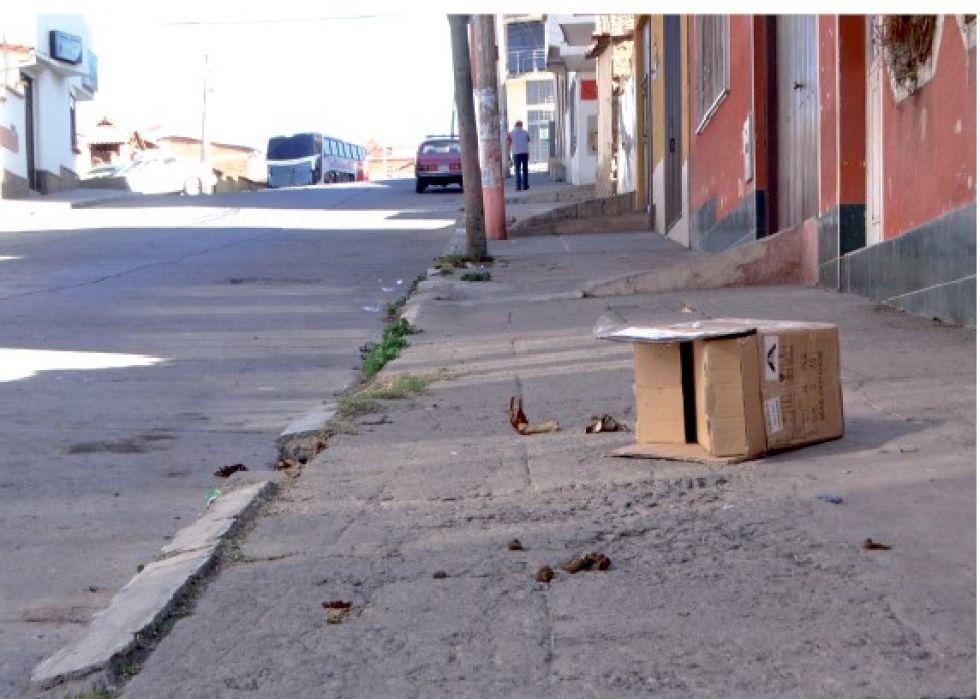 DESCUIDO. La existencia de varios negocios en la zona genera basura en las calles.
