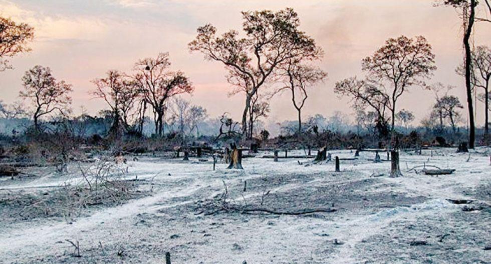 Bolivia da por extinguidos los peores incendios forestales en una década
