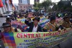 Sectores sociales afines al MAS participaron del desfile cívico militar que siguió a la posesión de Arce.