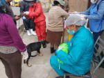 La vacunación en la zona de Bajo Mesa Verde.