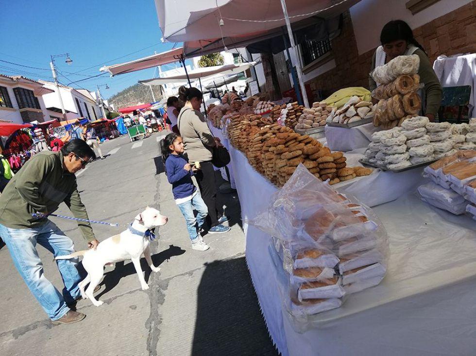 Festejo canino en honor a San Roque