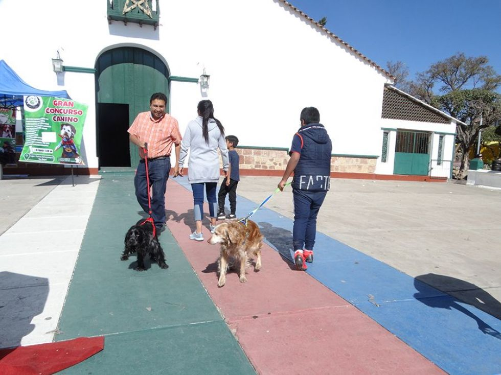 Familias agasajaron a sus mascotas.