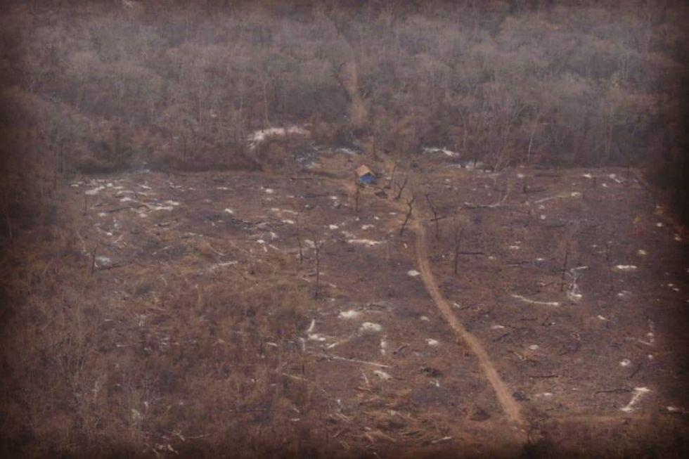 Así es el panorama del área forestal en Roboré por el fuego que se