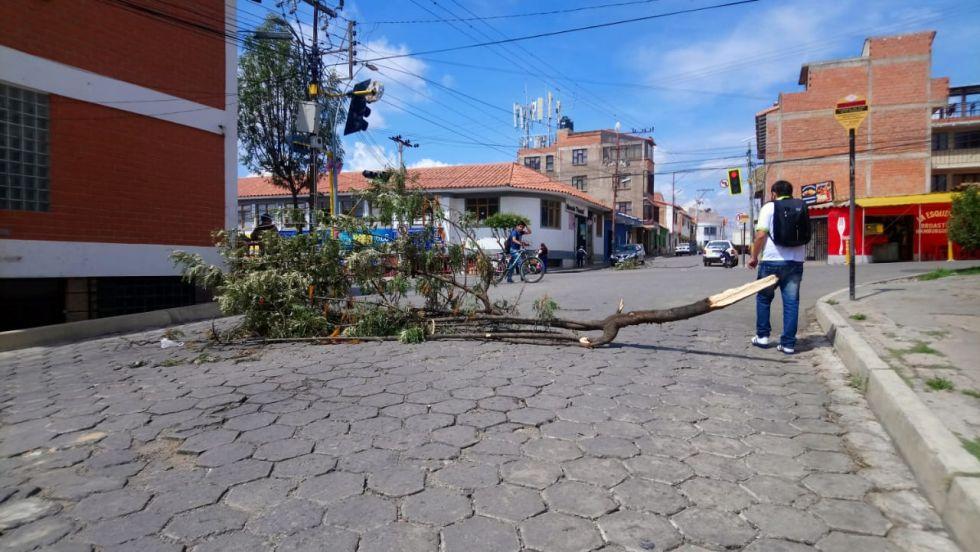 Utilizan un árbol para bloquear en la zona del mercado Poconas.