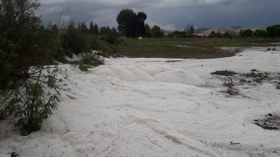 Fuerte granizada azota cultivos y provoca inundaciones en el municipio de Villa Charcas